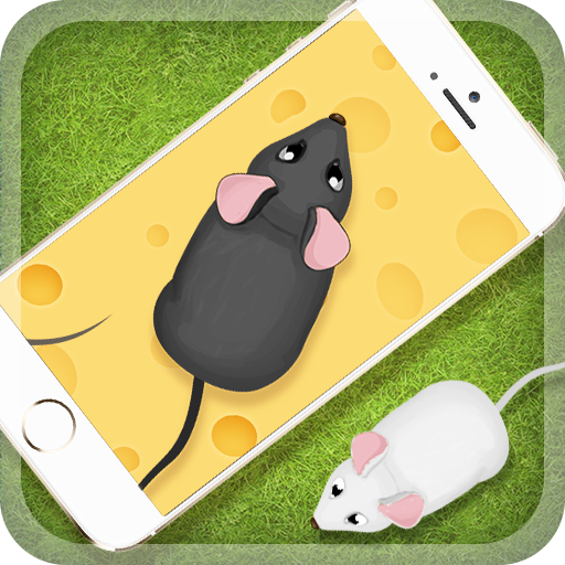 Games for the cat Mouse