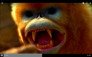 Screenshot of Smithsonian Channel