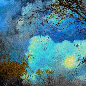 Sun in Sky by Edward Gold - Digital Art Places ( artistic objects, digital photography, light blue, yellow, cloudscape, trees, digital art, dark blue,  )