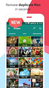 Phone Cleaner for WhatsApp Apk 3