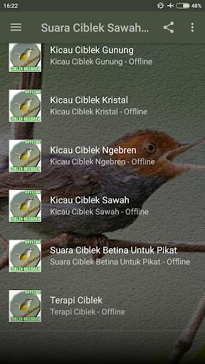 Suara Ciblek Sawah Ngebren Mp3 ss2
