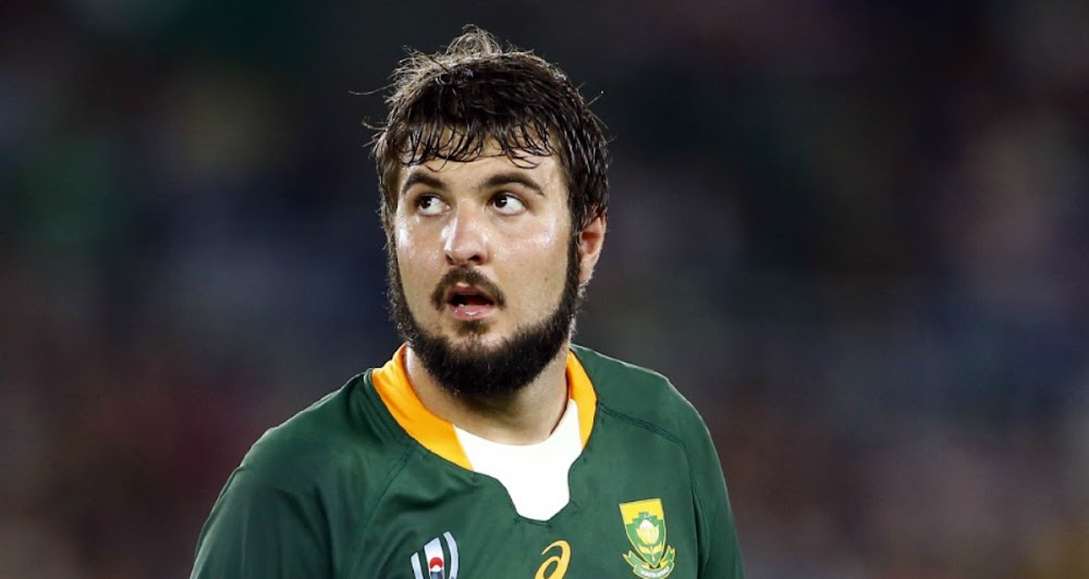 Springbok lock Lood de Jager says England are the favourites