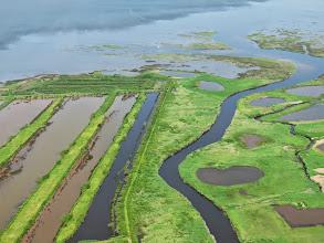 Photo: Bassin d'Arcachon