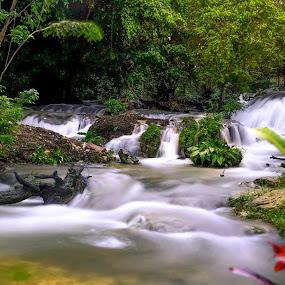 by Alexander Nainggolan - Landscapes Waterscapes ( stream, fakfak, waterfall, water flow )