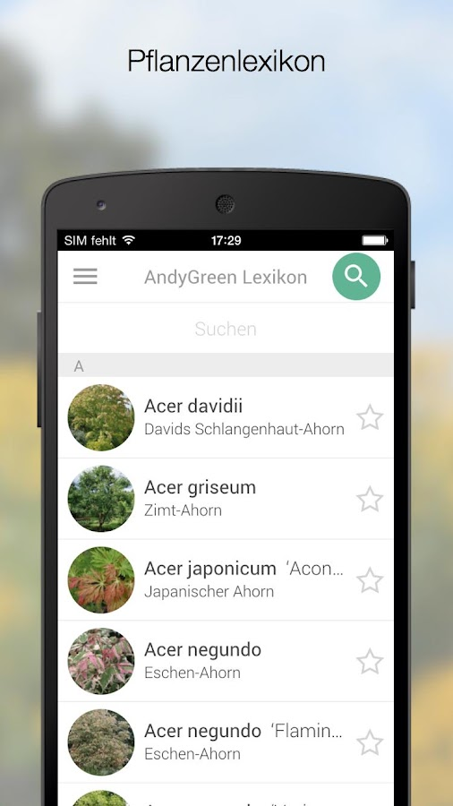 AndyGreen- screenshot