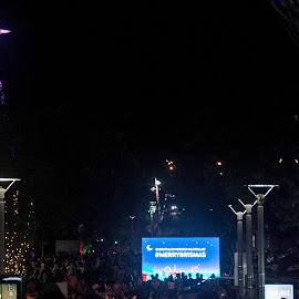 Brisbane Christmas by Mark Luyt - City,  Street & Park  Night ( city, street, night, festive, christmas star, christmas, lights,  )
