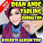 Dian Anic Tarling Dermayon Cinta Sengketa - Lirik APK