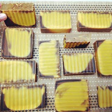 乳木老薑皂 (100g)