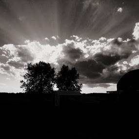 by Darla Grumbles - Black & White Landscapes