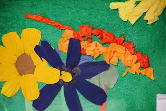 Photo: William Carr - 3rd Grade North Avondale Montessori Cincinnati, Ohio, U.S.A.