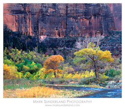 Photo: #FallFriday #FilmFriday  Zion Canyon, Autumn  Here's a shot of cottonwood trees in various stages of colour along the banks of the Virgin River in Zion Canyon, Utah, somewhere between Big Bend and Great White Throne viewpoint. I shot this a few years back on large format film with a Deardorff 45 Special which was great fun to use, if a little bulky for hiking around the canyon - being essentially a 5x7 camera with a 5x4 rotating back...  Deardorff 45 Special with Quickload back, Fuji Velvia 50 Pentax Digital Spotmeter Schneider Symmar-S 210mm, 1s at f22