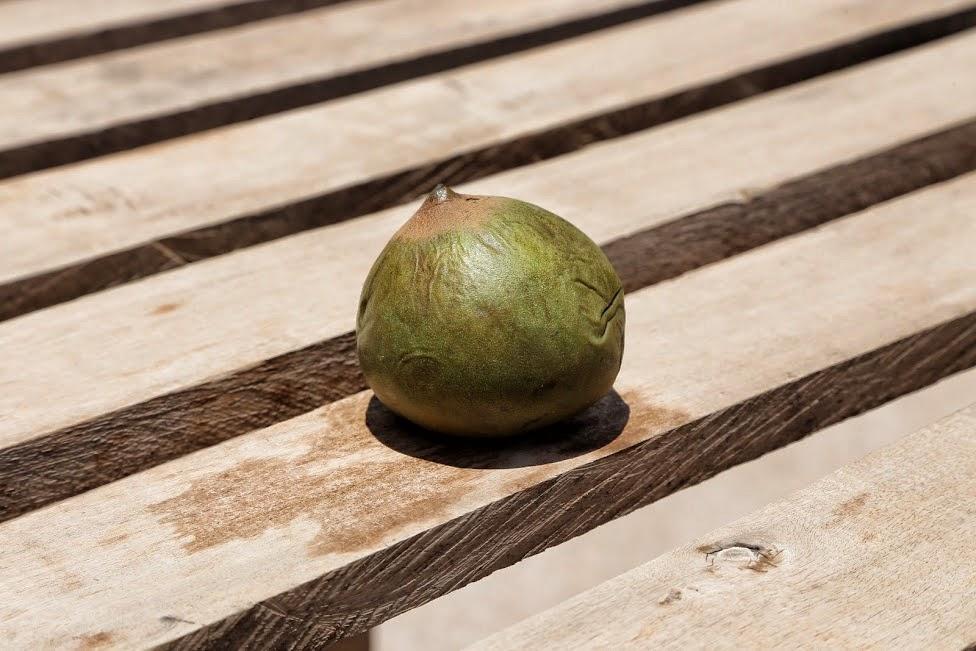 Egzotyczne owoce, Lucuma