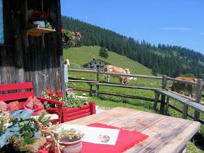 Photo: 01  Almgemütlich auf der Jochbergalm 1.265 m, Oberwidholzkaser (Auerkaser)