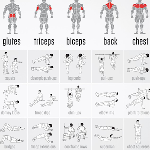 download home bodyweight workout  no equipment apk latest