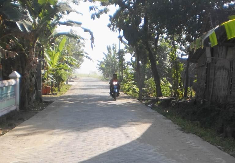 Profille Desa Sekaralas Ngawi