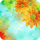 Colorful Flower Theme Android