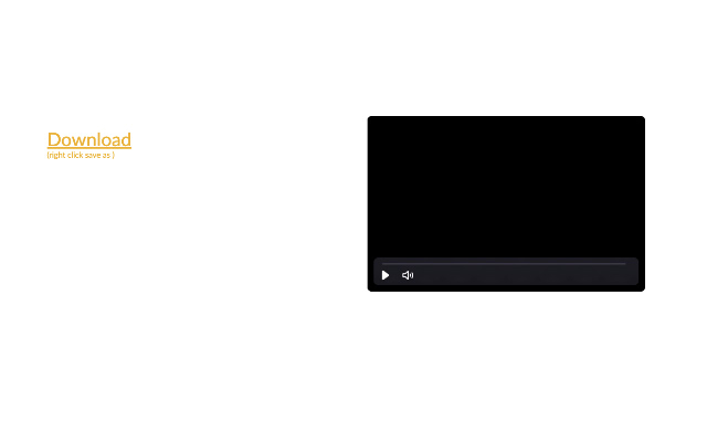 aviv video downloader