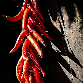 Peppers by Rebecca Pollard - Food & Drink Fruits & Vegetables (  )