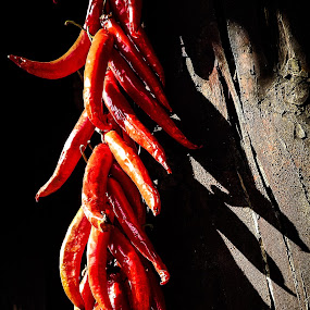 Peppers by Rebecca Pollard - Food & Drink Fruits & Vegetables (  )