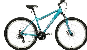 Stolen 'Christmas' bike found
