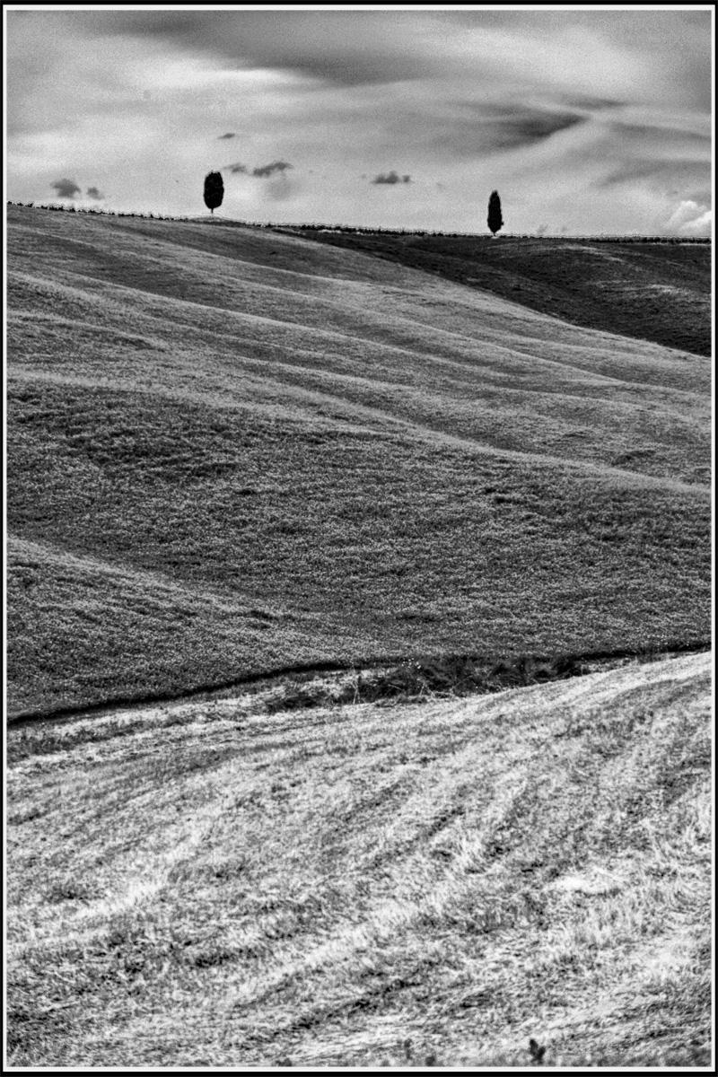 Tuscany di Pierluigi Terzoli