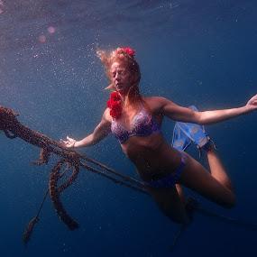 Mermaid by Sergei Tokmakov - People Portraits of Women ( nature, underwater, freediving, mermaid,  )