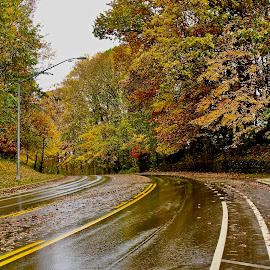 Rainy Fall day. by Peter DiMarco - City,  Street & Park  Vistas ( rain, fall colors, city, street, rainy day )
