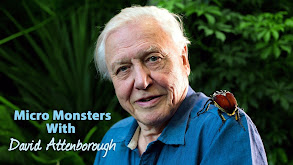 Micro Monsters With David Attenborough thumbnail
