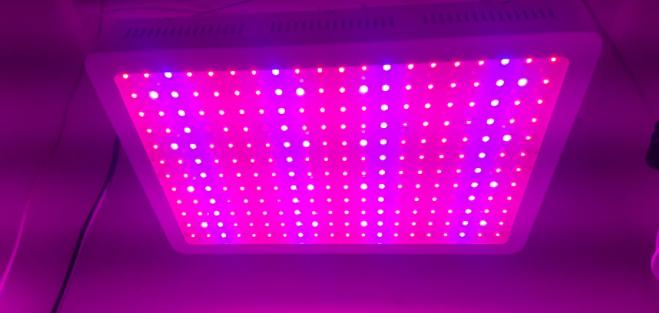 Morsen 2400W LED