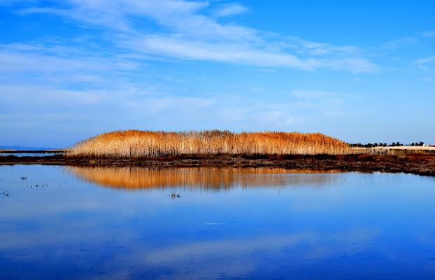 Laguna Blu! di Iky