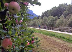 Photo: Es ist eine Lust, auf zwei Rädern unterwegs zu sein, in sanften Schleifen, horizontal wie vertikal, vorbei an Obstplantagen und Weinbergen. Doch aufgepasst, die letzten km bis zum Etappenziel Lévico Terme haben es in sich.