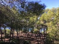 Cami de Ronda in Salou, tussen Cala Font en Penya Tallada