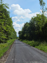 Photo: Cyklotrasa mezi Paskovem a Sviadnovem