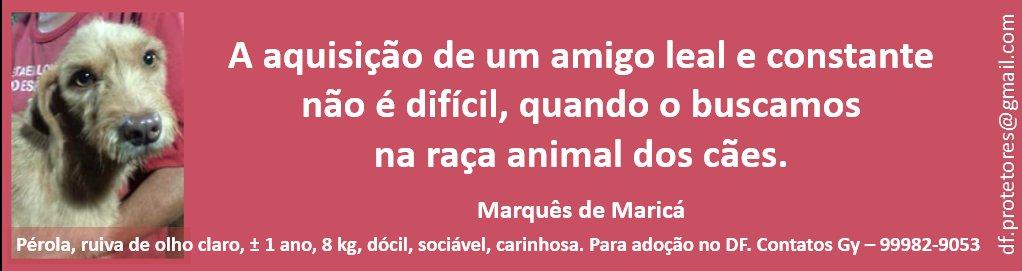 marques_marica.jpg