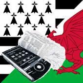 Breton Welsh Dictionary