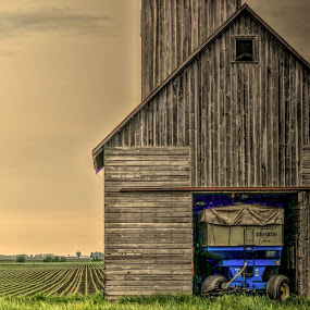 brown barn blue tractor by Fraya Replinger - Buildings & Architecture Other Exteriors ( farm, barn, blue, brown, tractor, country )