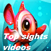Top Sights Videos