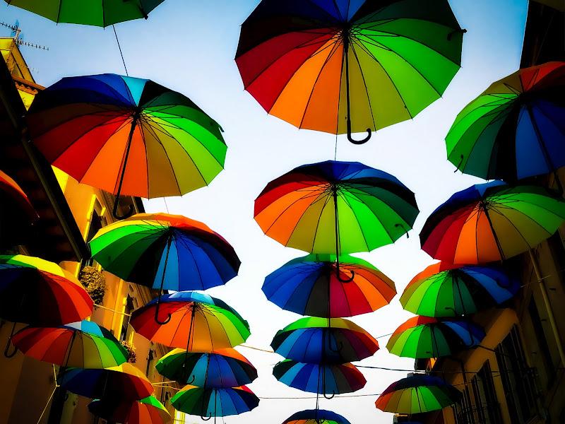 Dove piovono gli ombrelli di Cenati Gino