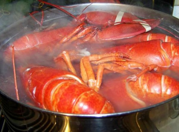 How To Boil A Lobster Recipe