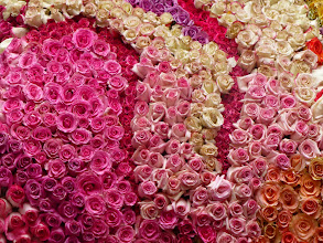 Photo: The queen's dress, detail