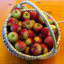 natural apples by Patrizia Emiliani - Food & Drink Fruits & Vegetables ( natural, apples,  )
