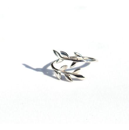 Silverring Twig-1
