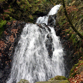 mountain stream 2 by Ivor Evans - Landscapes Waterscapes ( stream, mountain, wales, rocky, waterfall,  )