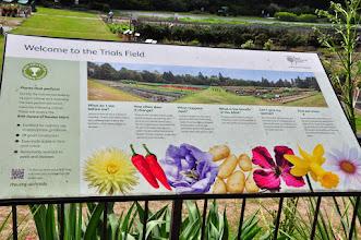 Photo: Trialfields proefvelden RHS gardens Wisley