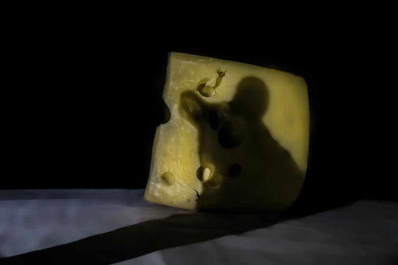 Il topo e il formaggio di Sara Jazbar