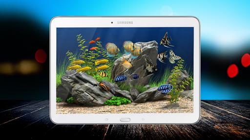 Lucky Aquarium Live Wallpaper