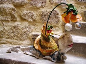 Photo: à dos d'escargot