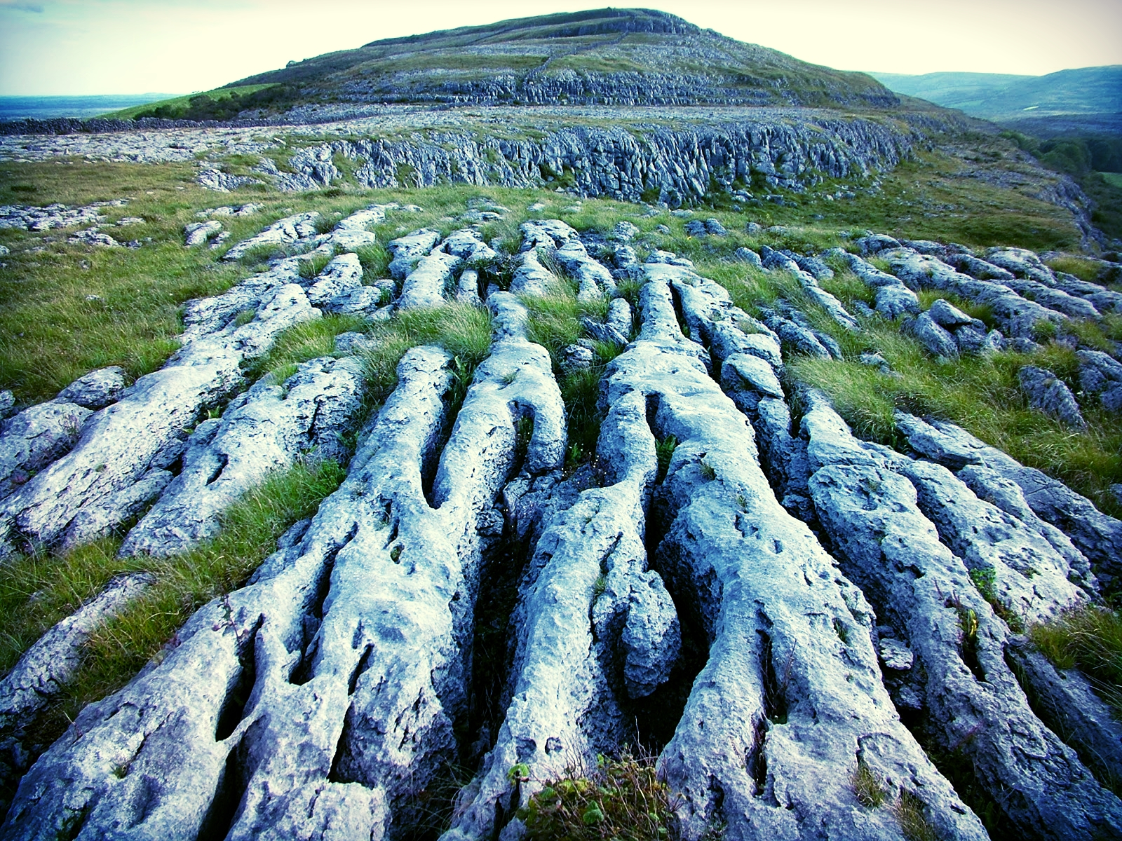 the-burren_20054846473_o.jpg