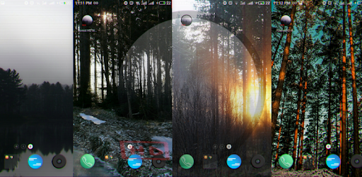 Качественные обои с изображением леса.