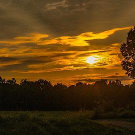 Sunset  by Amanda Burton - Landscapes Sunsets & Sunrises ( nature, sunsets, landscape )